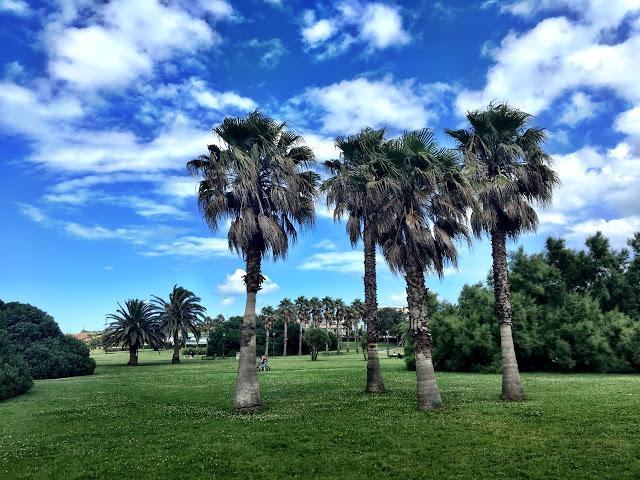 Parque del Rinconín