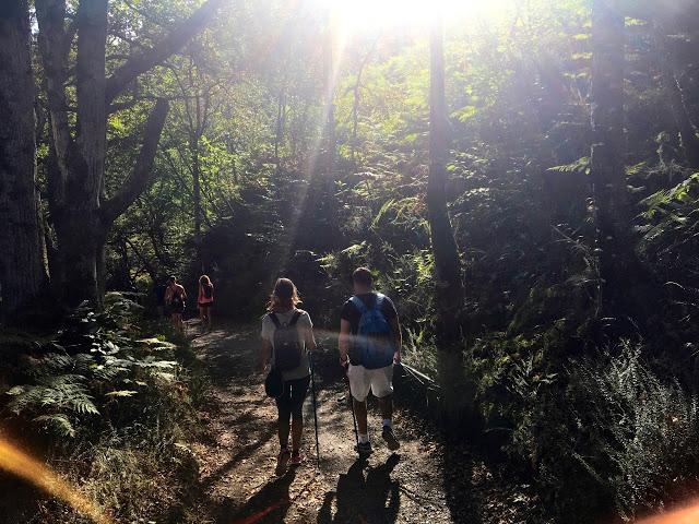 Camín a Cuadonga: El Romillín