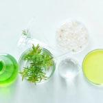 La Placenta Vegetal. Sus efectos en las cremas