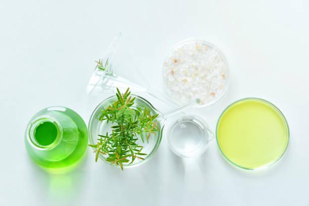 La placenta vegetal en cosmética